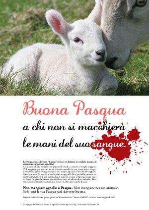 """La """"pelle"""" dell'agnello"""